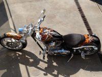 Reale Flammen Bulldog Airride Big Dog Motorcycles