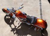 Big Dog Mastiff Burning orange Chopper
