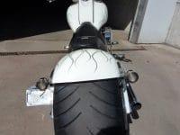 Big Dog Pitbull white metallic Ghost Flames Chopper