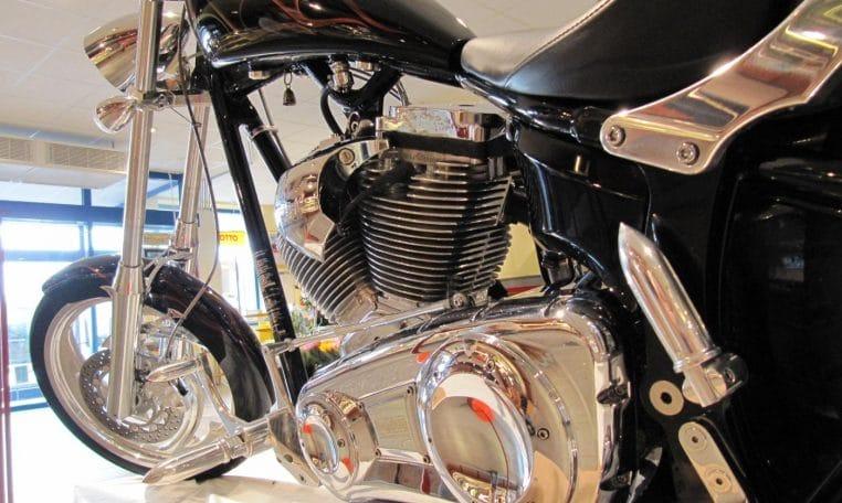 Big Dog Motorcycle Gecko Airbrush 250