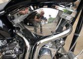 Big Dog Pitbull schwarz 250 HR-Upside Down Gabel