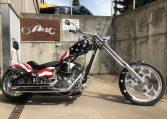 Big Dog Ridgeback USA Flag Easy Rider