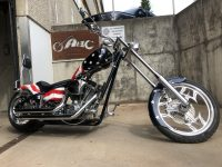 Big Dog Ridgeback USA Flag Easy Rider